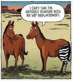 I can't say im entirely pleased with my hip replacement