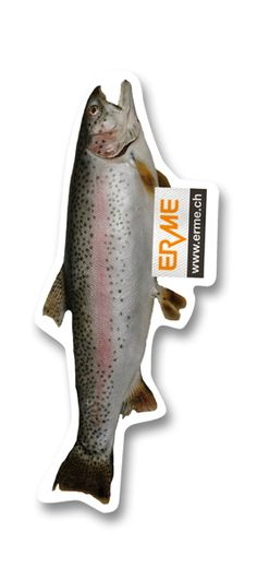 Ein Fisch als Lufterfrischer, Duftbaum, Duftanhänger für einen Schweizer Hersteller von Lebensmittelverpackungen.