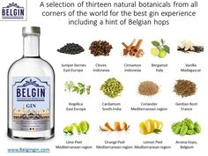 gin botanicals - Google Search