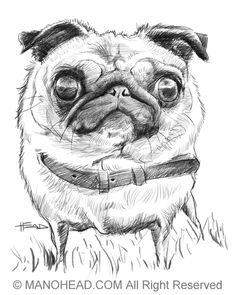 Cartoon: Pug (medium) by manohead tagged caricatura,caricature,manohead Pug Illustration, Pugs And Kisses, Pug Art, Black Pug, Pug Puppies, Mundo Animal, Pug Love, Image Hd, Caricature