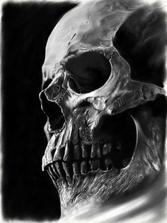 Realistic contrasting skull on Behance