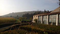#valpolicella november wine experience