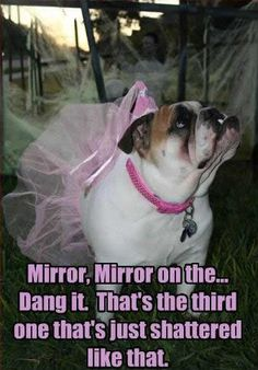 Such a Princess !