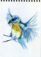 Mc Gezeichnet Vogel Skizze Aquarell Pinsel Und Tusche In 2020