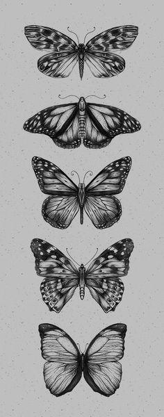 Tattoo Trends – Butterfliez by Anderson Alves via Behance Piercings Tattoo Tre. - Tattoo Trends – Butterfliez by Anderson Alves via Behance Piercings Tattoo Trends – Butterfliez - Trendy Tattoos, Small Tattoos, Cool Tattoos, Tatoo Art, Body Art Tattoos, Thigh Tattoos, Tattoo Music, Tattoo Forearm, Side Tattoos