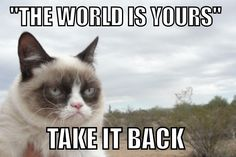 The world is yours...take it back -oh Grumpy Cat!