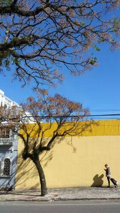Curitiba ensolarada