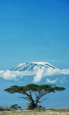 Mt. Kilimanjaro, Tanzania ….. Inspiration for  #skincancertakeahike #spotskincancer #packforlife