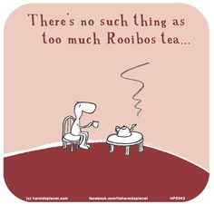 There's no such thing as too much Rooibos tea. Fighting The Flu, Last Lemon, Tea Cakes, My Tea, Healthy Options, Happy Day, Diversity, Health Benefits