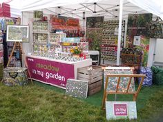Superb September day at the Romsey Show yesterday - perfect for speading some #wildflower love!