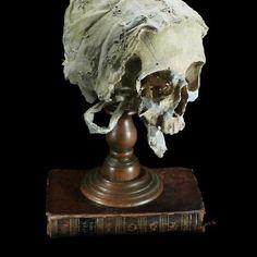I want a real human skull :(