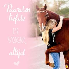 Pretty Horses, Horse Love, Beautiful Horses, Cute Texts, Hobby Horse, Horse Quotes, Barrel Racing, Horse Pictures, Jada