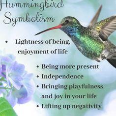 Hummingbird Quotes, Hummingbird Symbolism, Hummingbird Tattoo Meaning, Hummingbird Pictures, Hummingbird Spiritual Meaning, The Hummingbird, Butterfly Symbolism, Animal Meanings, Animal Symbolism