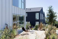 Gallery of Blackbirds / Bestor Architecture - 5