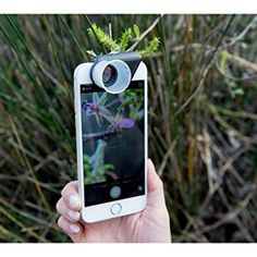 Usingolloclip Macro Pro Lens you can getover 80x magnification when combined with iPhone's digital zoom.