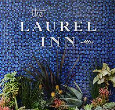 Welcoming to the Laurel Inn, a charming, pet-friendly boutique hotel in San Francisco's Pacific Heights neighborhood.