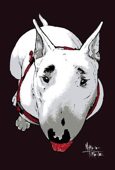 BULL TERRIER | TIROTE BLOG