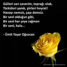 Gülleri sarı severim, toprağı ıslak,  Türküleri yanık, şiirleri hoyrat!  Havayı…