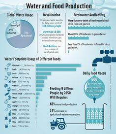 Statistics and infographics on water usage in food production and agriculture Technology Magazines, Food Technology, Daily Water, Statistics, Agriculture, Fresh Water, Infographics, Infographic, Infographic Illustrations