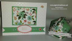 www.Papierkreationen.net: Vielen Dank: Karte mit passender Beutel-Box, angefertigt mit Produkten von Stampin' Up!