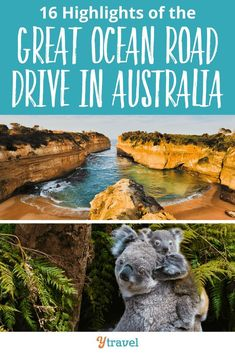 16 Highlights of the Great Ocean Road Drive in Australia. While on your bucket list vacation, this is one of the top things to do! An Australia road trip including all the best things to do along this epic drive will make it the trip of a lifetime.  Opportunities to view animals and wildlife, amazing natural attractions, gorgeous sunset opportunities, and more - use these tips for planning your itinerary so you dont miss anything along the route! #Australia #GreatOceanRoad #familytravel