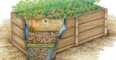 Hochbeete liefern reiche Erträge und ersparen lästiges Bücken bei der Aussaat und Pflege der Pflanzen. Mit dieser Bauanleitung ist es kein Problem, sein Hochbeet selber zu bauen.