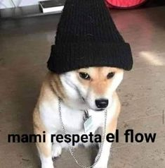 Funny Profile Pictures, Funny Reaction Pictures, Funny Pictures, Mexican Memes, Spanish Memes, Funny Spanish, Wholesome Memes, Stickers, Meme Faces