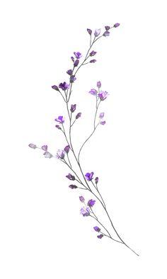 55 Breathtaking Flower Tattoos Ideas Brenda O. Art Floral, Motif Floral, Floral Drawing, Cute Tattoos, Body Art Tattoos, Small Tattoos, Small Flower Tattoos, Flower Tattoo Designs, Tatoos