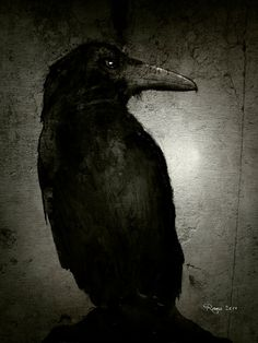 The Crow by Roma