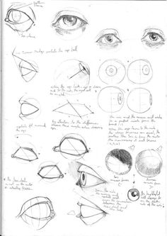 Drawing For Beginners Drawing Studies, Drawing Skills, Drawing Tips, Croquis Drawing, Eye Anatomy, Anatomy Art, Anatomy Sketches, Anatomy Drawing, Eye Drawing Tutorials