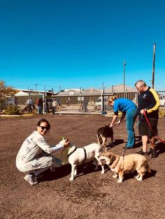 EFRC teamed up with the Grabouw Animal Clinic and we invited members of the local community to bring their pets to be vaccinated and de-wormed for free. Animal Clinic, Pet Clinic, The Locals, Bring It On, Community, Pets, Free, Animals, Animals And Pets