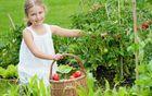 Naschgarten: Gemüsebeet für Kinder anlegen