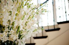 White Orchid Centerpiece Arrangement