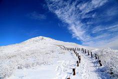 Snow covered Deogyusan National Park, Korea