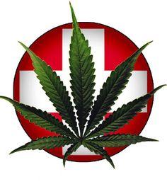 Healthcare professionals are in favor of medical marijuana.