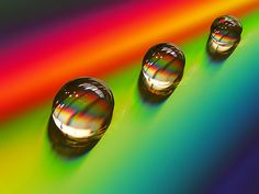 Macro Photograph of Water Drops Water Drop Photography, Micro Photography, Art Photography, Dew Drops, Rain Drops, Gota A Gota, What's My Favorite Color, Drip Drop, Fotografia Macro