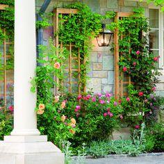 Wall Trellis Panels for a garden wall Wall Trellis, Trellis Panels, Garden Trellis, Diy Trellis, Rose Trellis, Trellis Design, Cedar Trellis, Small Space Gardening, Garden Spaces