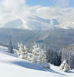 THE CARPATHIANS UKRAINE http://www.ukrainetravel.co/best-places/carpathians-ukraine#