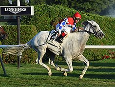 White Rose, by Tapit, finally found her graded victory, and did so in course record time Sept. 5 at Saratoga Race Course, taking the 1 3/8-mile Glens Falls turf test in 2:11.46.