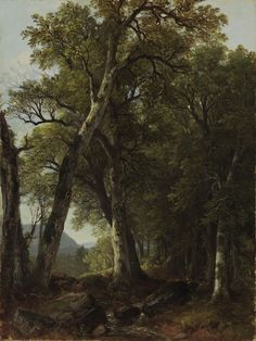 """Asher B. Durand's """"Through the Woods"""" was one of the original works purchased by Matthew Vassar from Elias Magoon for the Vassar Art Gallery."""