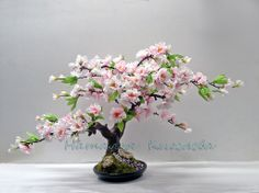 Бонсай Цветущая Сакура - розовый,бонсай,бонсай сакура,розовая ...