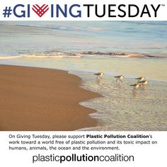 Plastic Pollution Solutions, Giving Tuesday, Environment, Ocean, Earth, Island, World, Awesome, Water