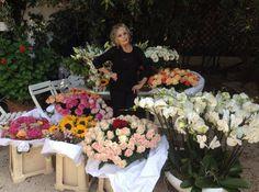 Joyeux anniversaire Brigitte Bardot (28/09/14) Happy birthday Brigitte Bardot  (28/09/14)