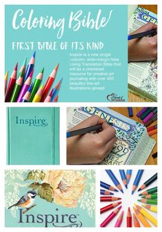 Vicky Hudson: The Coloring Bible