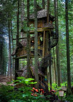 Maison d'une dryade