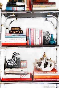 Lindsey Coral Harper Apartment - Zebra Decor Collection - House Beautiful
