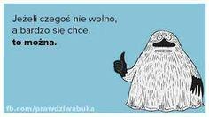 Znalezione obrazy dla zapytania buka muminki cytaty