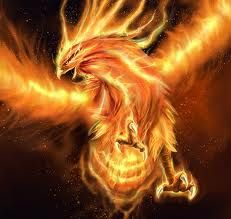 Like the phoenix i will rise from the ashes  credit:http://phoenix1-world.de.tl/*-*-LEGEND-OF-PHOENIX-*-*.htm