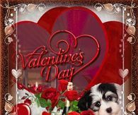 I Love You, Happy Valentines Day Pictures, Photos, and Images for Facebook, Tumblr, Pinterest, and Twitter Friend Pictures, Pictures Images, Photos, Happy Valentines Day Pictures, Happy Birthday Wallpaper, Happy Birthday Wishes Cards, Gif Photo, Tumblr Image, Facebook Image
