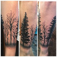 30+ Simple and Easy Pine Tree Tattoo Designs for Natural living